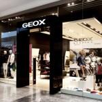 assunzioni geox