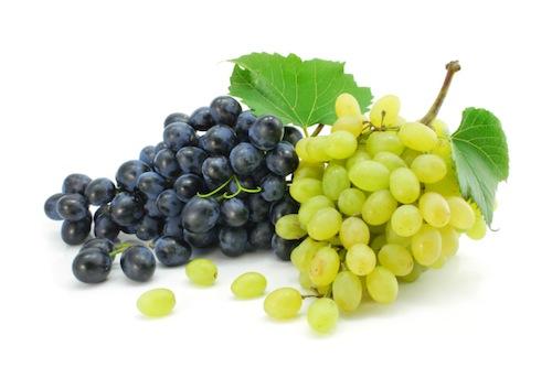 lavoro sicilia settore vinicolo