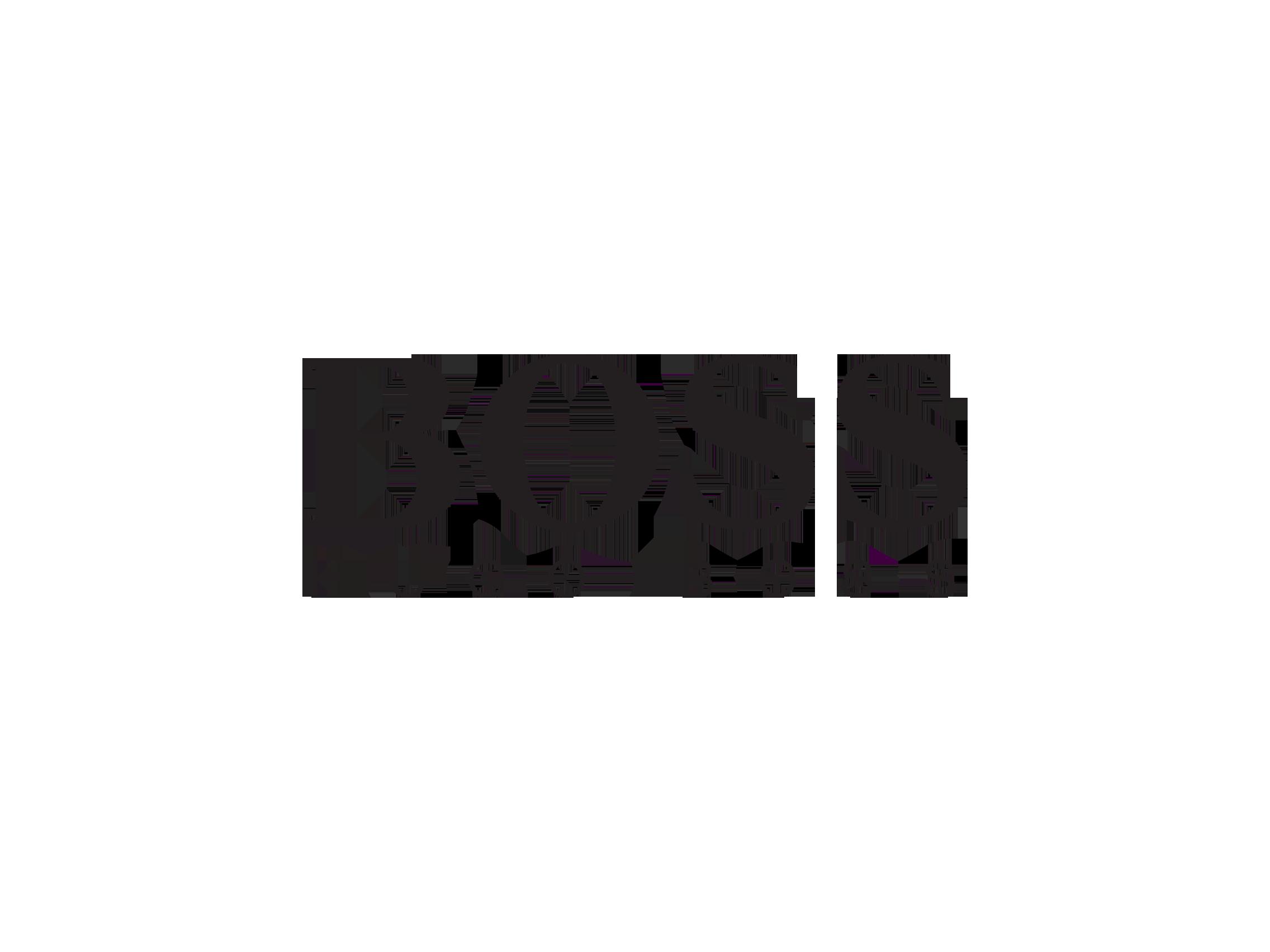assunzioni hugo boss